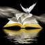 Tema;Instruyendo y Disciplinando Nuestros ninos Proverbios22;6