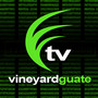 vineyardtv