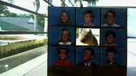 Brady Bunch Squirrel