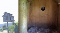 The Owl Box 08/25/11 04:55PM