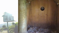 The Owl Box 08/25/11 06:55PM