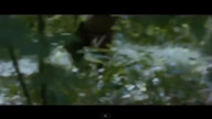 The Hunger Games Teaser Trailer view on ustream.tv tube online.
