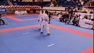 Karate | WKF | -75 Kumite Individual Male Seniors, Istanbul 2011