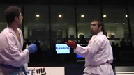 Karate | WKF | -75 Kumite Individual Male Seniors, Paris 2012