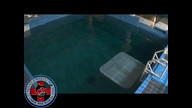 Winter the Dolphin Webcam 2/29/12 08:17PM PST