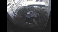 The Franklin Institute Hawk Nest www.fi.edu/hawks 3/9/12 04:07AM PST
