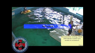 Winter the Dolphin Webcam 3/11/12 06:51AM PST