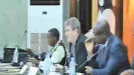 Panel 2, (2/2) Towards Implementation of the Outcomes - Dakar Rio+20 Meetings