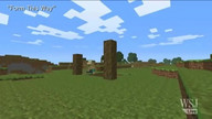 Hit pop songs featured in Minecraft