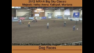 Dog Races