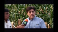 PROGRAMA EL CAMPO