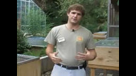 Winterizing at the World of Reptiles - broadcast September 22, 2009, 9:30 a.m. EST