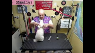 Punky gets groomed by Poppy
