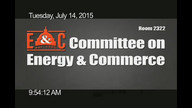 USHR19 Energy and Commerce Committee