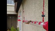 WORLD OF HUMMINGBIRDS! ourhummingbirdnest.com
