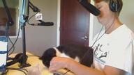 IC animal care and adoption
