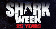 Shark Week Web Site